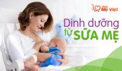 Thành Phần Khiến Sữa Mẹ Là Nguồn Dinh Dưỡng Tốt Nhất Cho Con