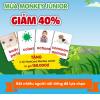 Monkey Junior- Ứng Dụng Học Tiếng Anh Cho Trẻ