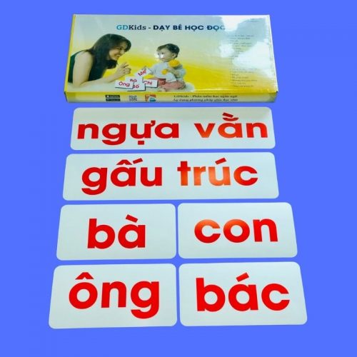 Thẻ Flashcard Glenn Doman GDkids -Bộ 100 Thẻ Tiếng Việt