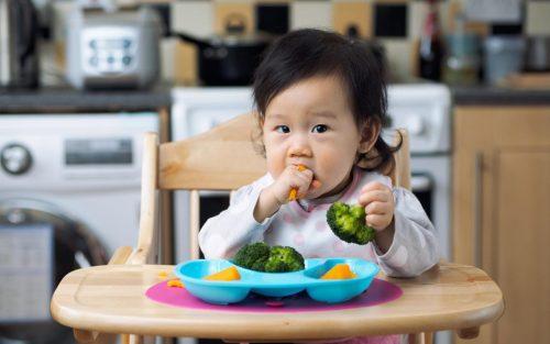 Thực Đơn Ăn Dặm Kiểu Nhật Cho Bé 7-8 Tháng